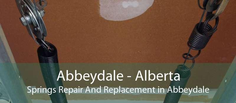 Abbeydale - Alberta Springs Repair And Replacement in Abbeydale