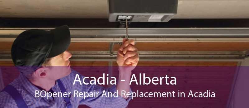 Acadia - Alberta BOpener Repair And Replacement in Acadia