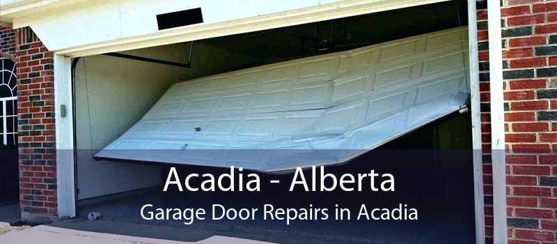 Acadia - Alberta Garage Door Repairs in Acadia
