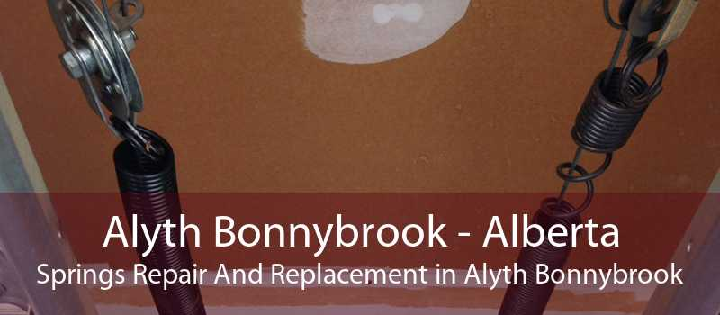Alyth Bonnybrook - Alberta Springs Repair And Replacement in Alyth Bonnybrook