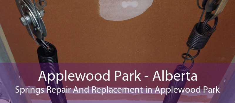 Applewood Park - Alberta Springs Repair And Replacement in Applewood Park