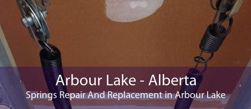 Arbour Lake - Alberta Springs Repair And Replacement in Arbour Lake