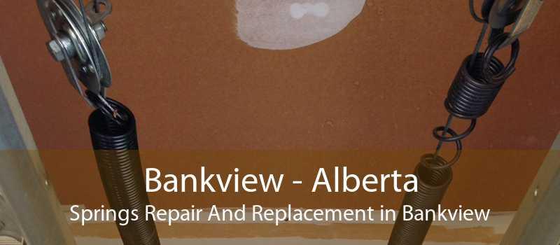Bankview - Alberta Springs Repair And Replacement in Bankview
