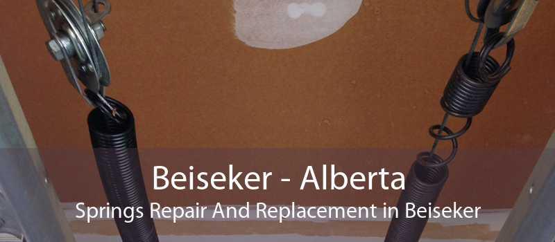 Beiseker - Alberta Springs Repair And Replacement in Beiseker
