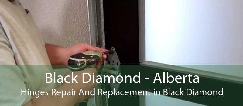 Black Diamond - Alberta Hinges Repair And Replacement in Black Diamond
