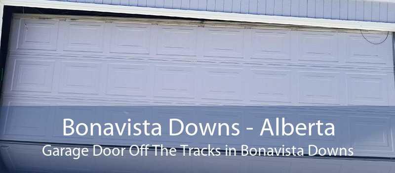 Bonavista Downs - Alberta Garage Door Off The Tracks in Bonavista Downs