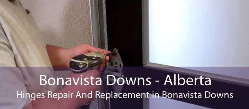 Bonavista Downs - Alberta Hinges Repair And Replacement in Bonavista Downs