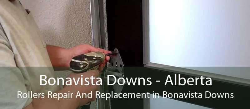 Bonavista Downs - Alberta Rollers Repair And Replacement in Bonavista Downs