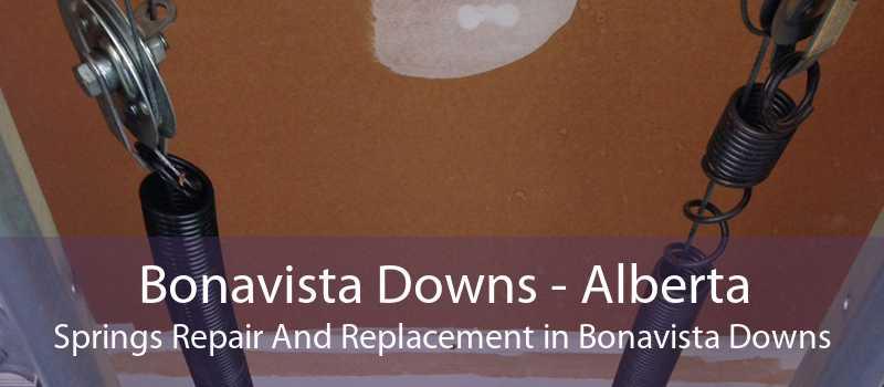 Bonavista Downs - Alberta Springs Repair And Replacement in Bonavista Downs