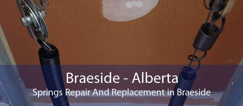 Braeside - Alberta Springs Repair And Replacement in Braeside
