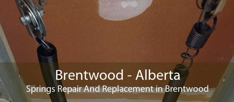 Brentwood - Alberta Springs Repair And Replacement in Brentwood