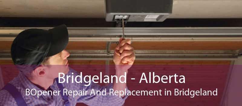 Bridgeland - Alberta BOpener Repair And Replacement in Bridgeland