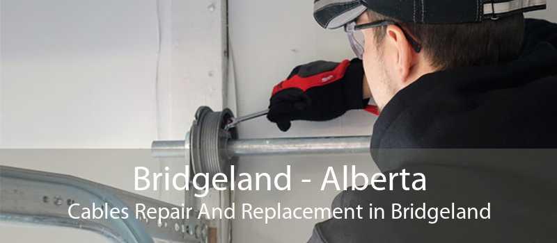 Bridgeland - Alberta Cables Repair And Replacement in Bridgeland