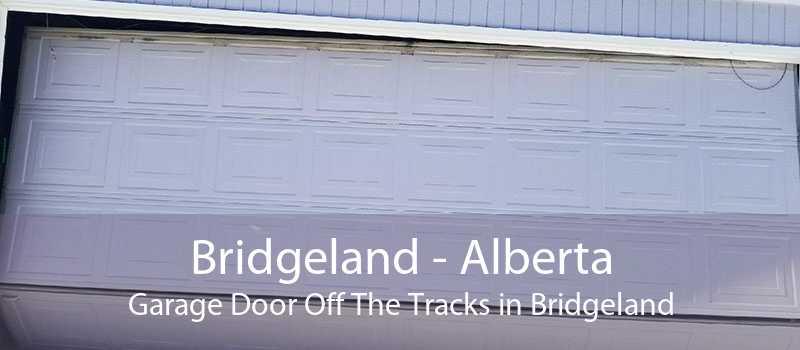 Bridgeland - Alberta Garage Door Off The Tracks in Bridgeland