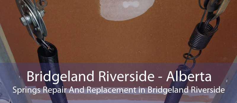 Bridgeland Riverside - Alberta Springs Repair And Replacement in Bridgeland Riverside