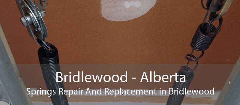 Bridlewood - Alberta Springs Repair And Replacement in Bridlewood