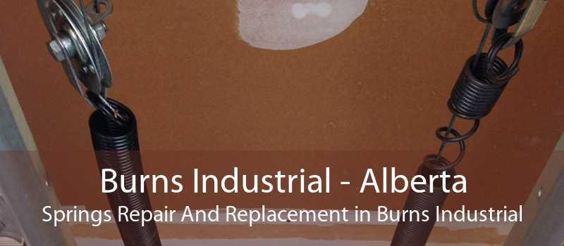 Burns Industrial - Alberta Springs Repair And Replacement in Burns Industrial
