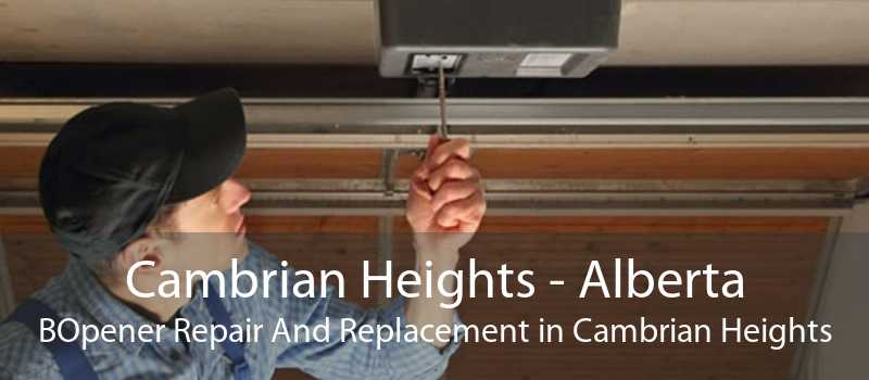 Cambrian Heights - Alberta BOpener Repair And Replacement in Cambrian Heights