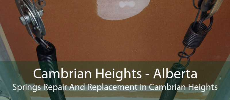 Cambrian Heights - Alberta Springs Repair And Replacement in Cambrian Heights