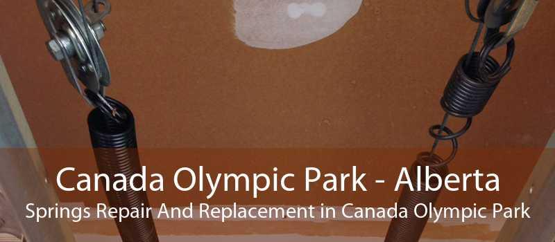 Canada Olympic Park - Alberta Springs Repair And Replacement in Canada Olympic Park