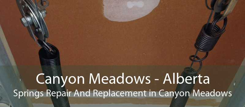 Canyon Meadows - Alberta Springs Repair And Replacement in Canyon Meadows