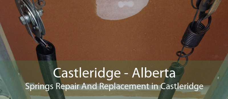 Castleridge - Alberta Springs Repair And Replacement in Castleridge