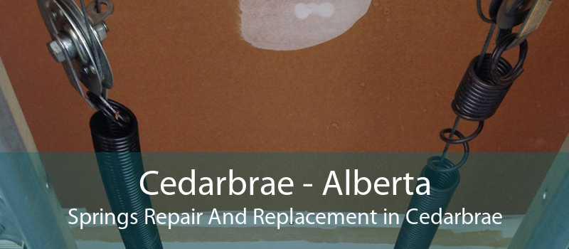 Cedarbrae - Alberta Springs Repair And Replacement in Cedarbrae