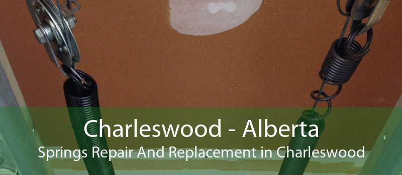 Charleswood - Alberta Springs Repair And Replacement in Charleswood
