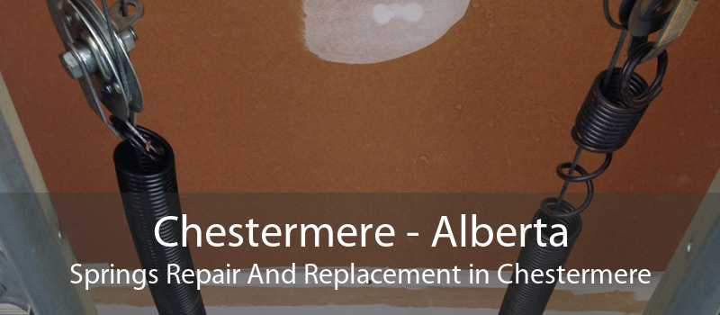 Chestermere - Alberta Springs Repair And Replacement in Chestermere