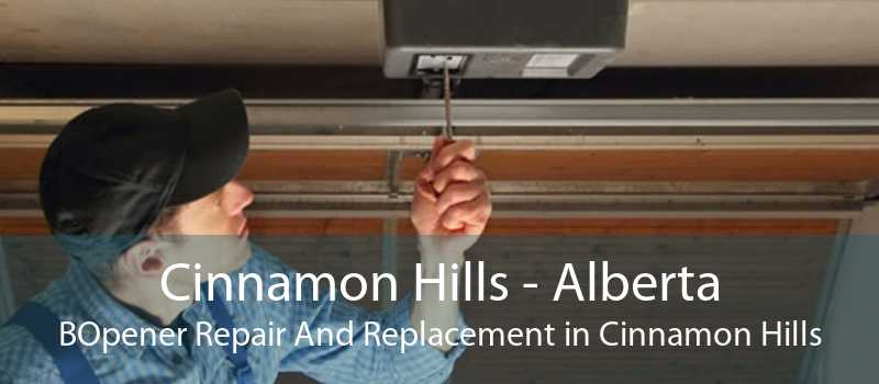 Cinnamon Hills - Alberta BOpener Repair And Replacement in Cinnamon Hills