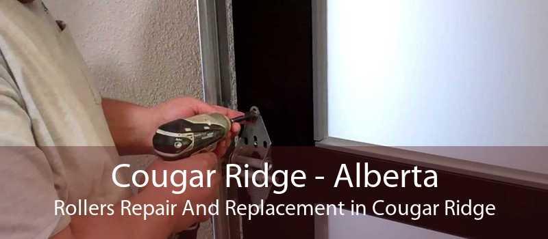 Cougar Ridge - Alberta Rollers Repair And Replacement in Cougar Ridge