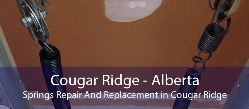 Cougar Ridge - Alberta Springs Repair And Replacement in Cougar Ridge