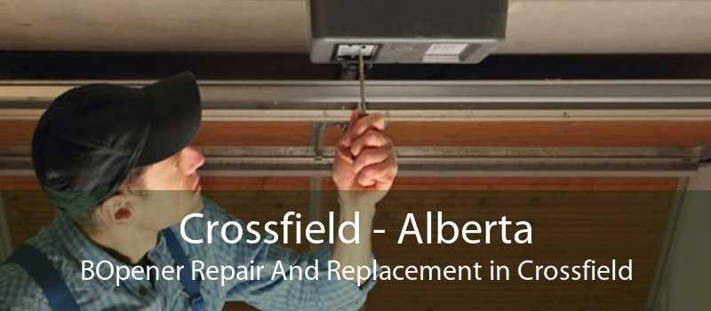 Crossfield - Alberta BOpener Repair And Replacement in Crossfield
