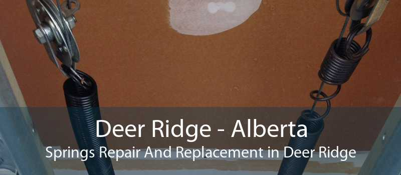 Deer Ridge - Alberta Springs Repair And Replacement in Deer Ridge