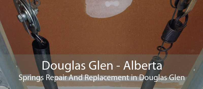 Douglas Glen - Alberta Springs Repair And Replacement in Douglas Glen