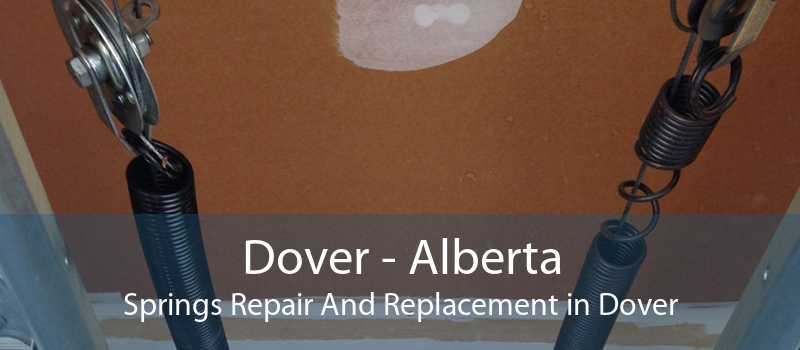 Dover - Alberta Springs Repair And Replacement in Dover
