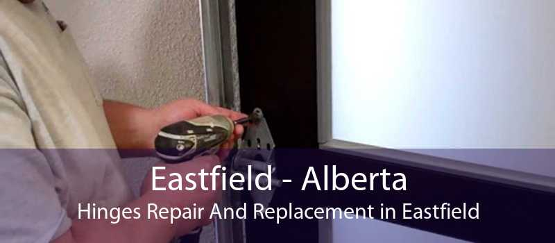Eastfield - Alberta Hinges Repair And Replacement in Eastfield