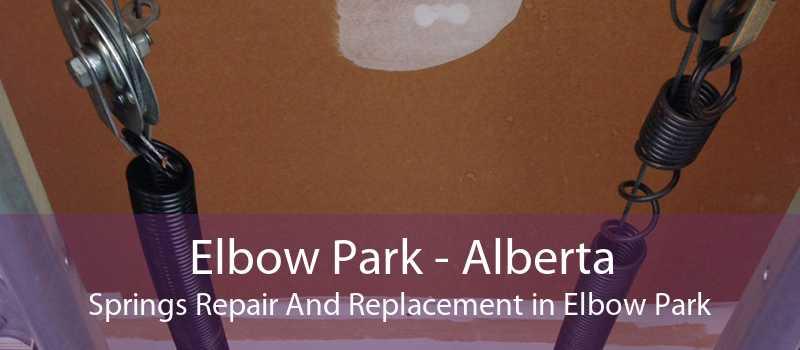 Elbow Park - Alberta Springs Repair And Replacement in Elbow Park