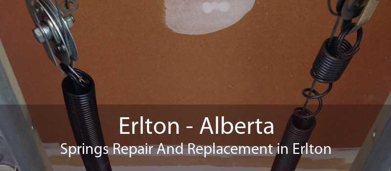 Erlton - Alberta Springs Repair And Replacement in Erlton