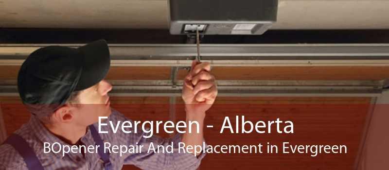Evergreen - Alberta BOpener Repair And Replacement in Evergreen
