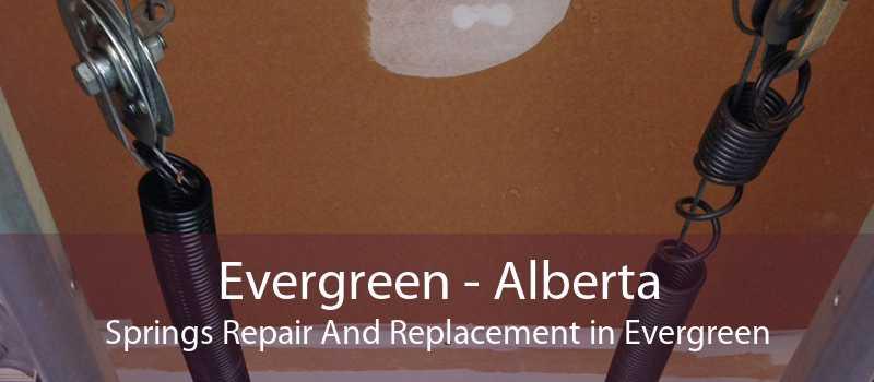 Evergreen - Alberta Springs Repair And Replacement in Evergreen
