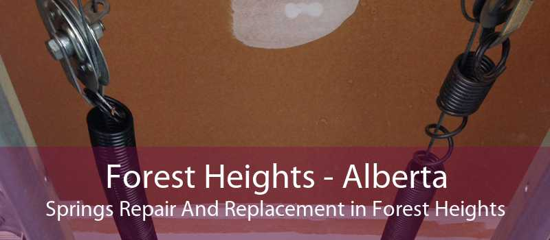 Forest Heights - Alberta Springs Repair And Replacement in Forest Heights
