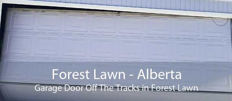 Forest Lawn - Alberta Garage Door Off The Tracks in Forest Lawn