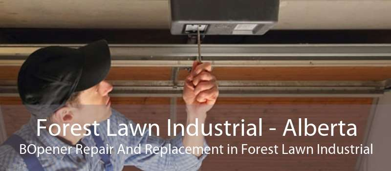 Forest Lawn Industrial - Alberta BOpener Repair And Replacement in Forest Lawn Industrial