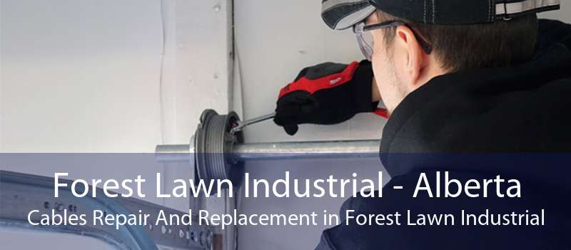 Forest Lawn Industrial - Alberta Cables Repair And Replacement in Forest Lawn Industrial