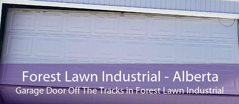 Forest Lawn Industrial - Alberta Garage Door Off The Tracks in Forest Lawn Industrial