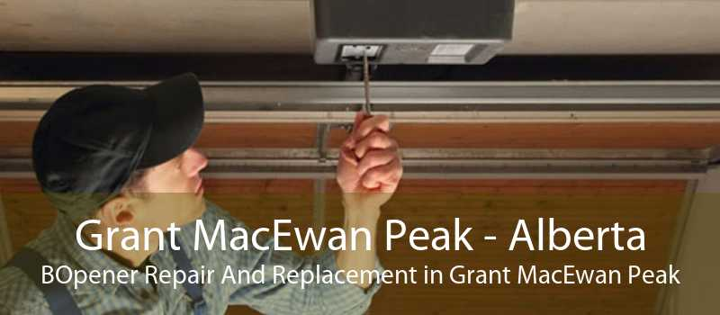Grant MacEwan Peak - Alberta BOpener Repair And Replacement in Grant MacEwan Peak