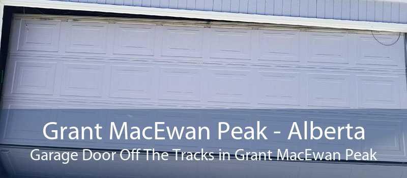 Grant MacEwan Peak - Alberta Garage Door Off The Tracks in Grant MacEwan Peak