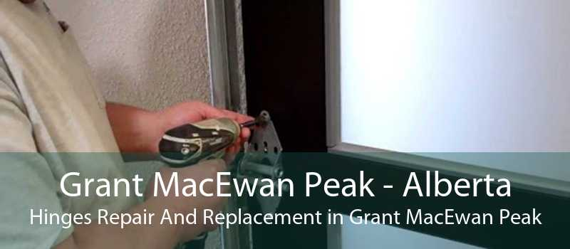 Grant MacEwan Peak - Alberta Hinges Repair And Replacement in Grant MacEwan Peak
