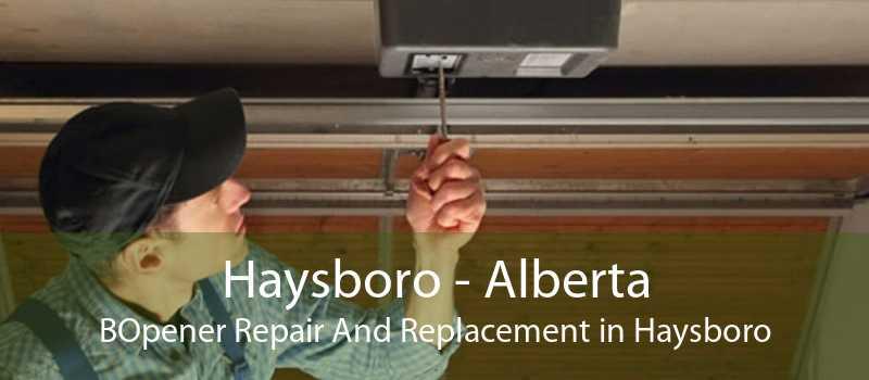 Haysboro - Alberta BOpener Repair And Replacement in Haysboro